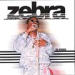 Zebra-Winner